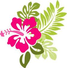 Hibiscus clipart luau birthday. Google search tropical quilt