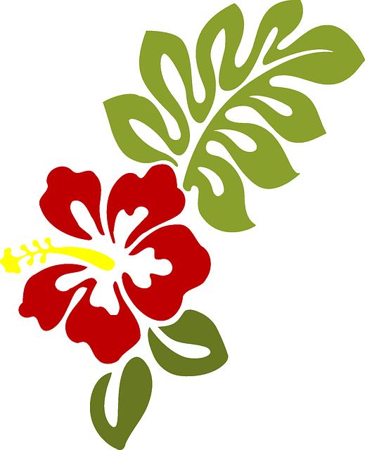 Hibiscus clipart moana. Michele luminarias em pvc