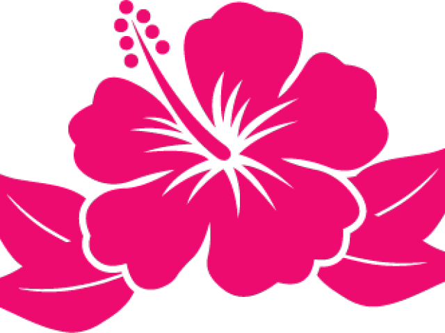 Cliparts free download clip. Hibiscus clipart moana
