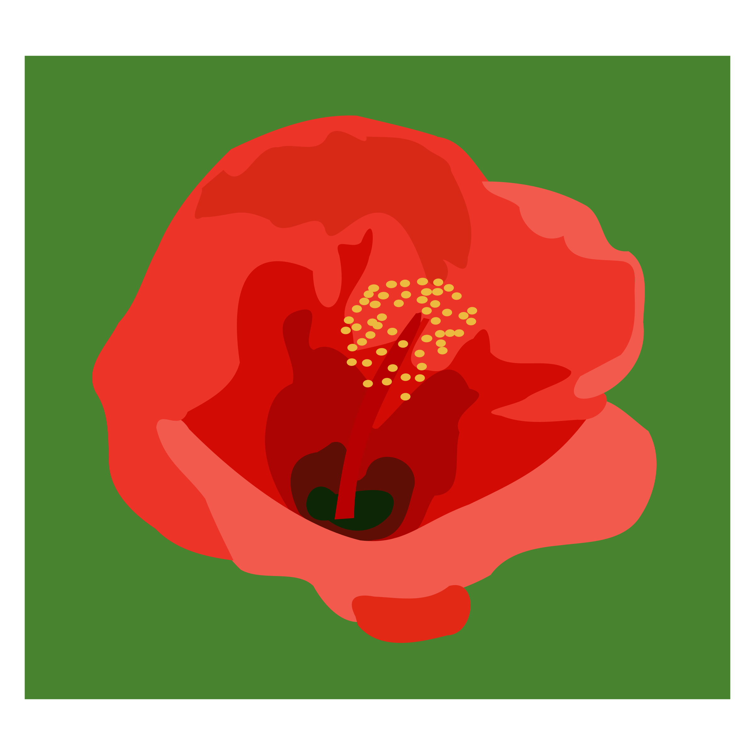 Icons png free and. Hibiscus clipart phool
