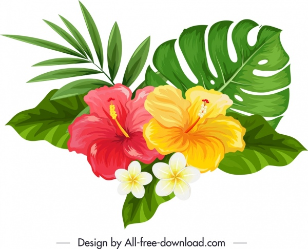 Hibiscus clipart plumeria. Natural flowers icon multicolored