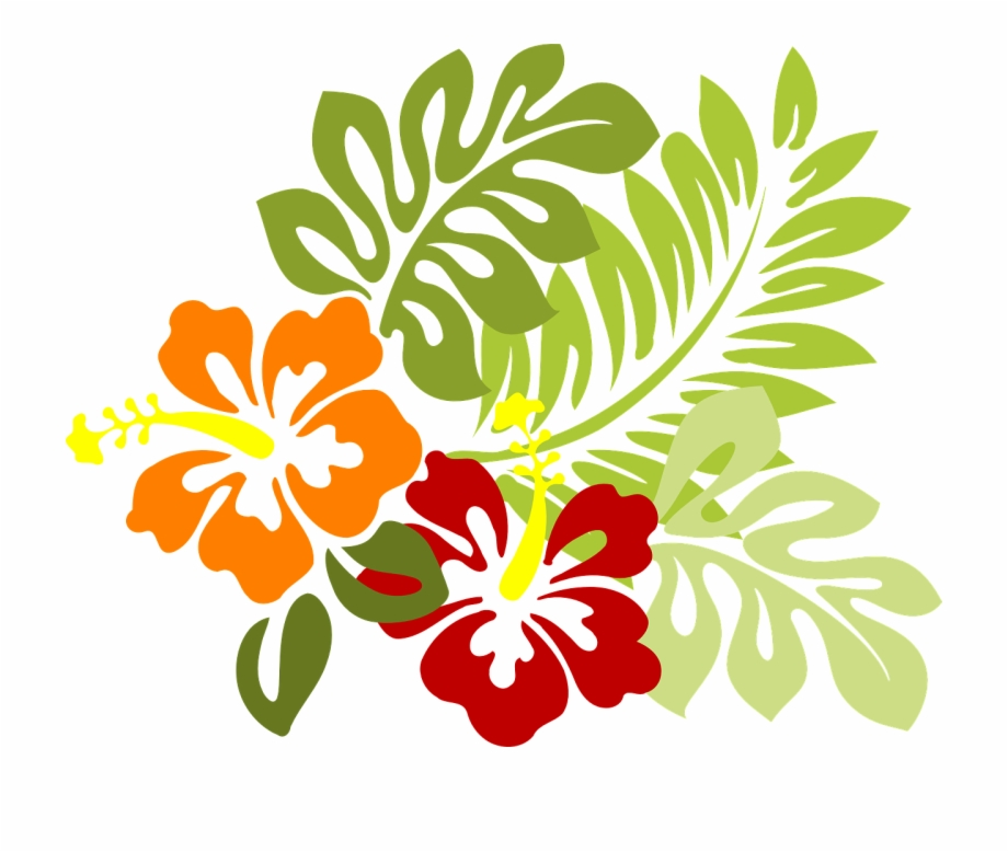 Flower tropical leaves png. Hibiscus clipart polynesian