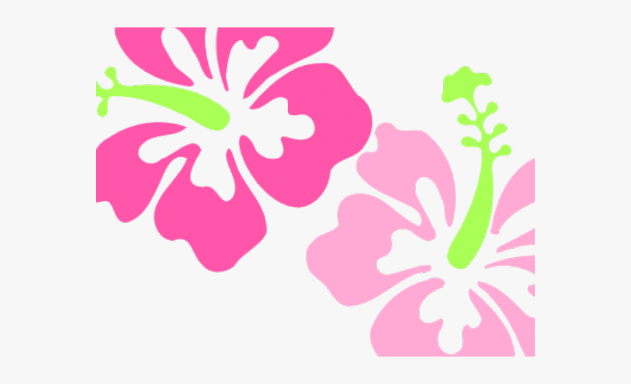 Hibiscus clipart polynesian. Polynesia pink flower border