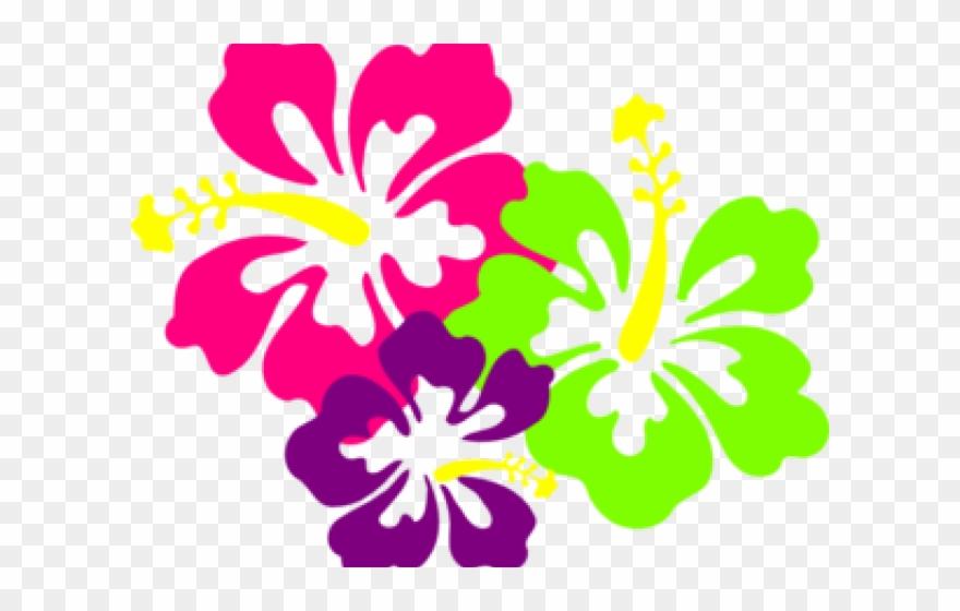 Hibiscus clipart polynesian. Polynesia tropical flower clip