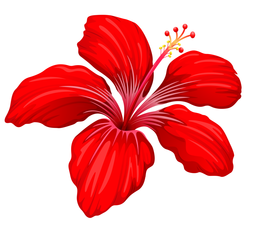 youtube clipart floral #148941532