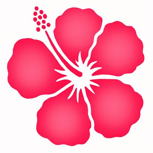 Flower probably get it. Hibiscus clipart simple