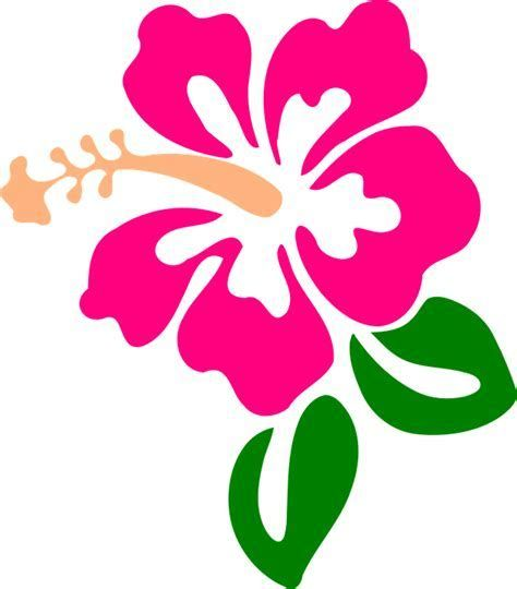 Hibiscus clipart svg free. Image result for flower
