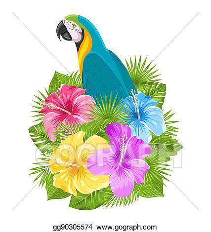 Hibiscus clipart tropical bird. Vector stock parrot ara