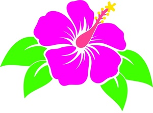 Free flowers cliparts download. Hibiscus clipart tropical flower