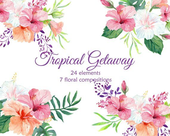 Pin on products . Hibiscus clipart tropical vine