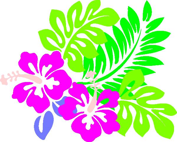 Hibiscus clipart tropical vine. Drawings of flowers leaves