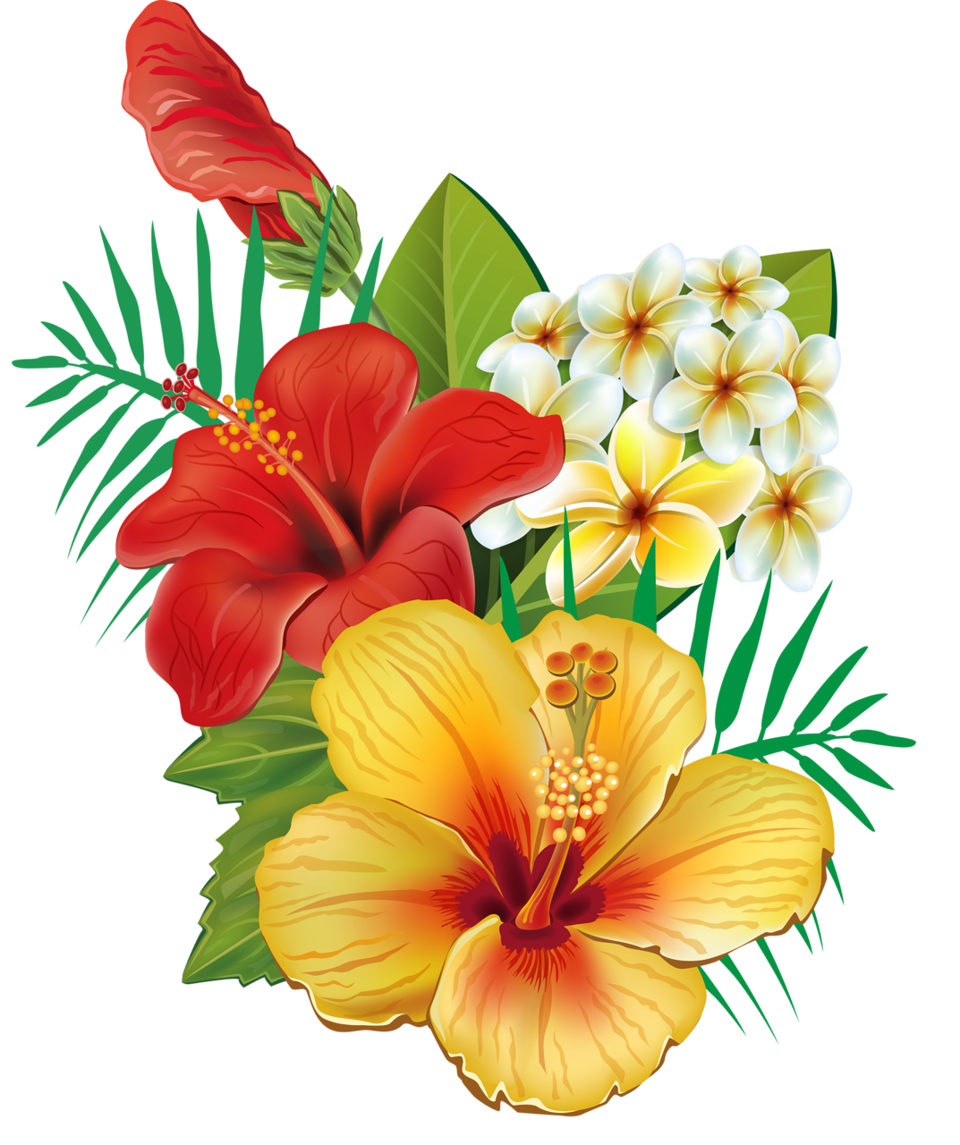 png flowers drawing. Hibiscus clipart wedding hawaii