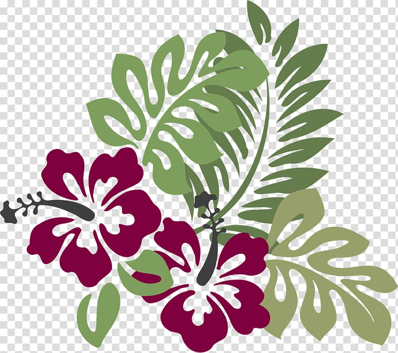 Hibiscus clipart wedding hawaii. Drawing hawaiian flower transparent