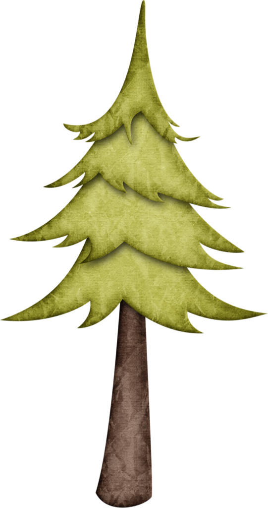 Woodland clipart fine tree. Ch b happy camper