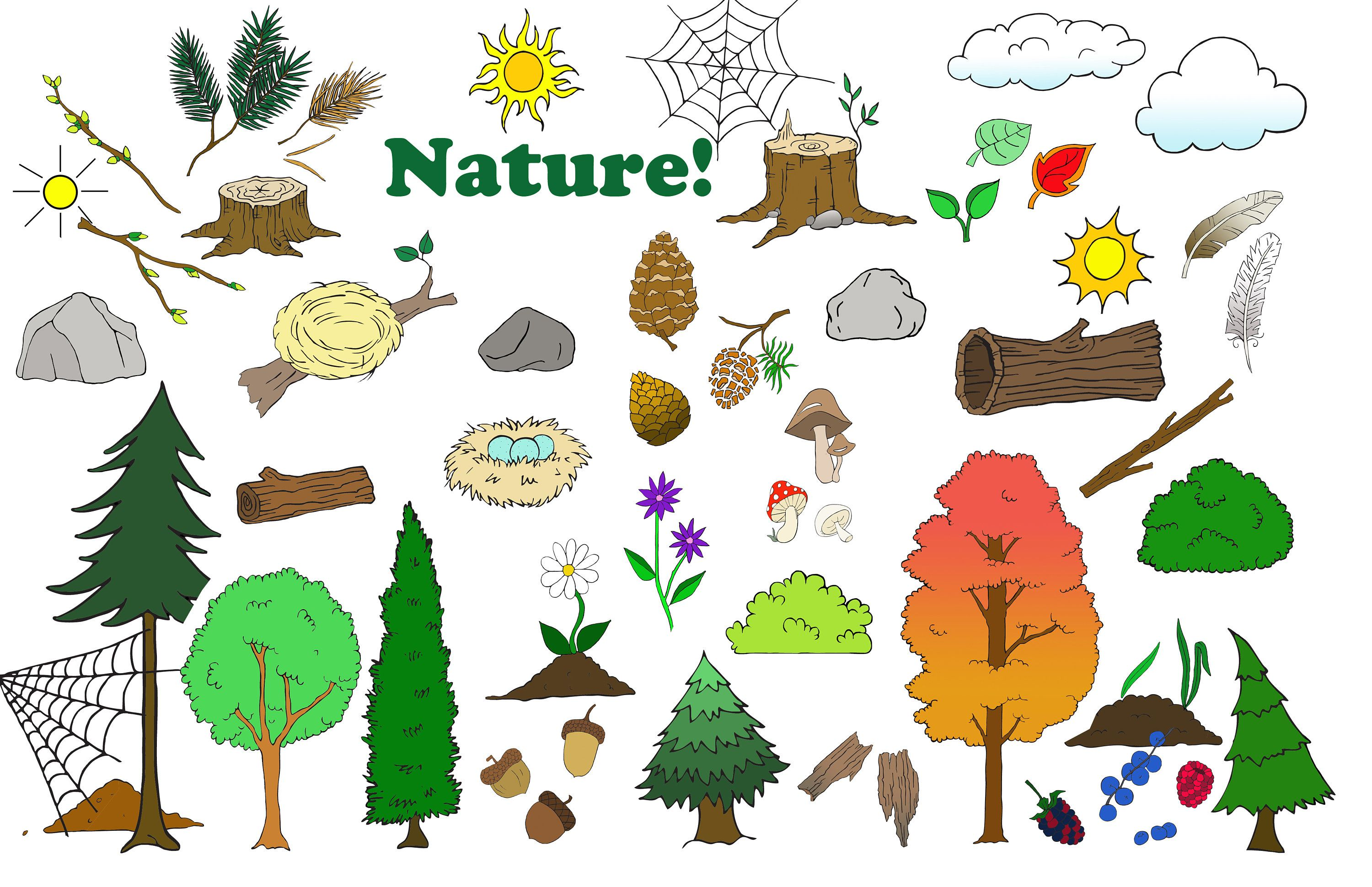 Camping animal rustic tree. Hunting clipart nature