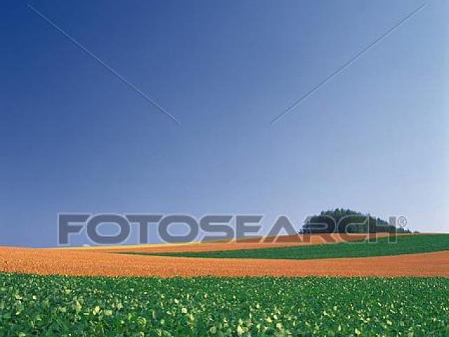 Free download clip art. Hill clipart flat land