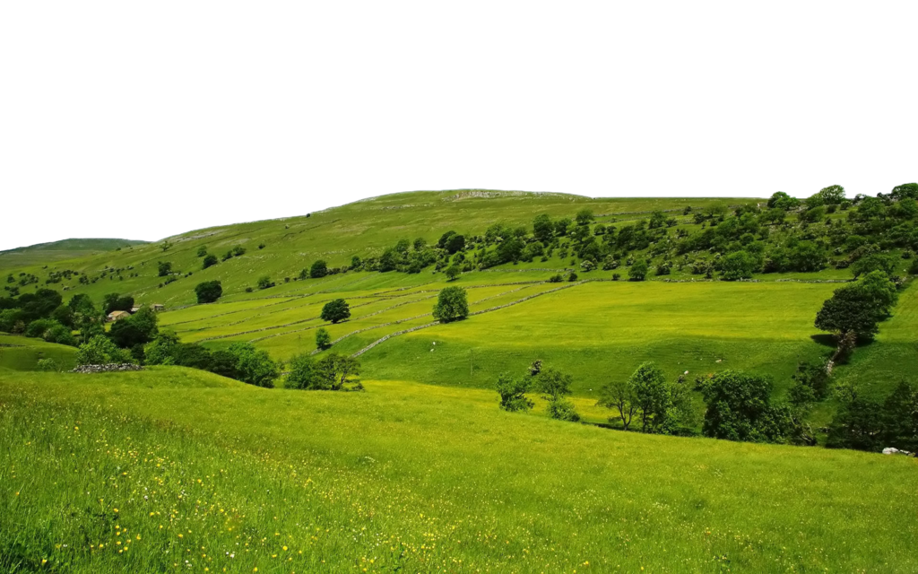 Download free png transparent. Hill clipart green nature