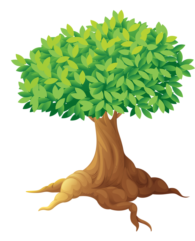 png pinterest clip. Tree clipart zoo