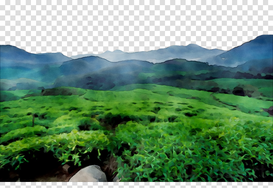 Green grass background nature. Hill clipart natural vegetation
