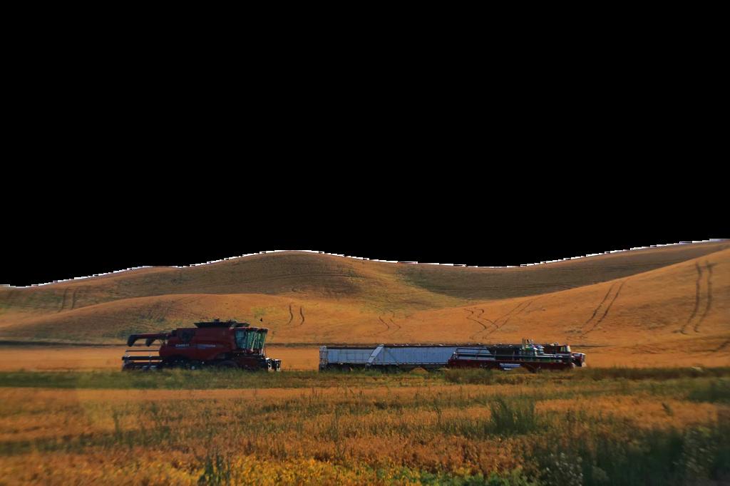 Transprent png view landscape. Hill clipart rural road