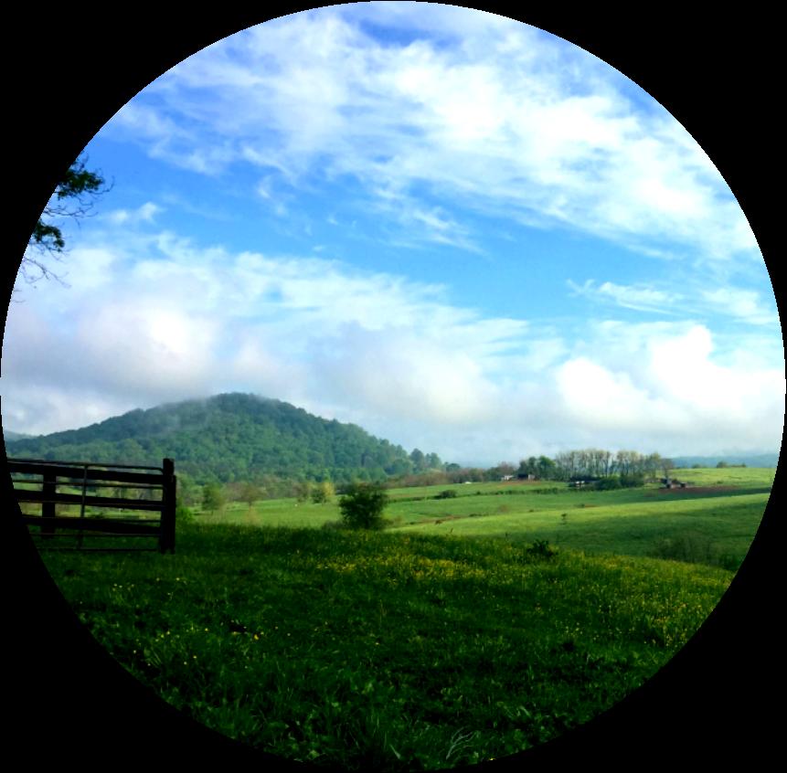 Hills clipart plain landscape. Loggerhead shrike recovery program