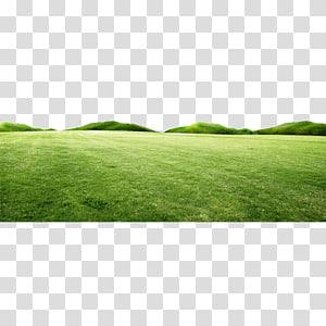 Hills clipart yard. Giza desktop landscape cartoon