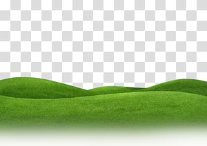 Green grass illustration grasses. Hills clipart yard