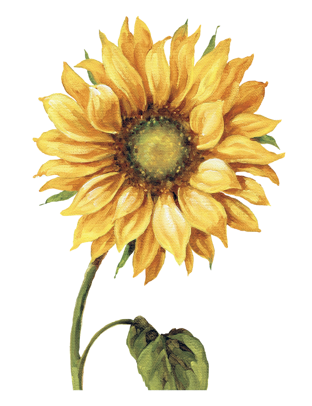 i ekler png. Painting clipart sunflower van gogh