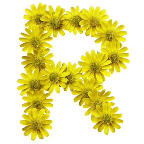 Hippie clipart yellow green flower. Buy flowers font and