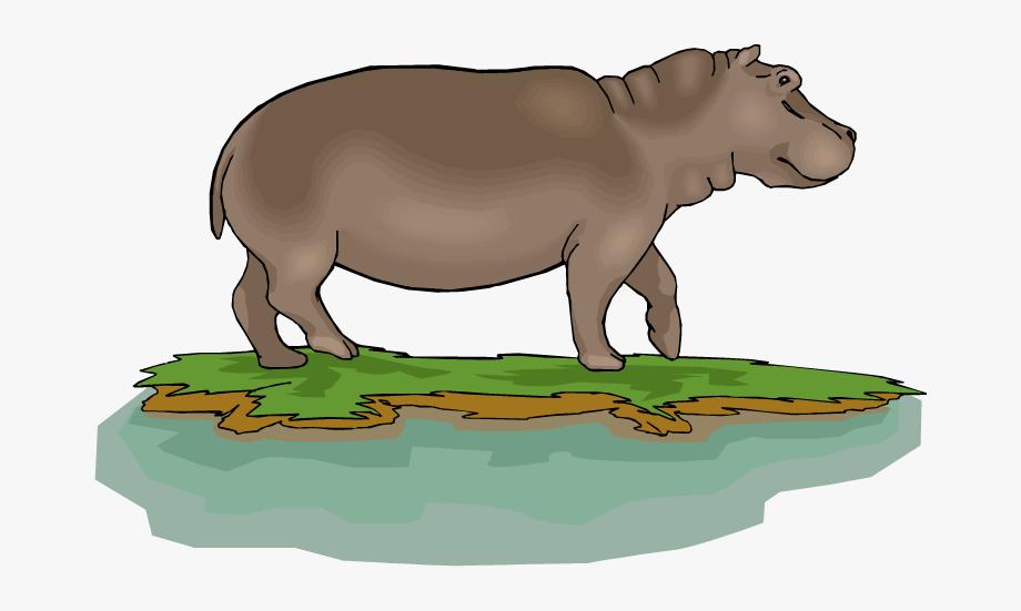 Free in rivers . Hippo clipart gloria