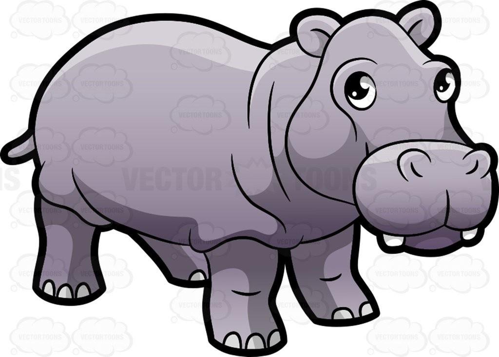 Hippo clipart hippo animal.  baby cute on