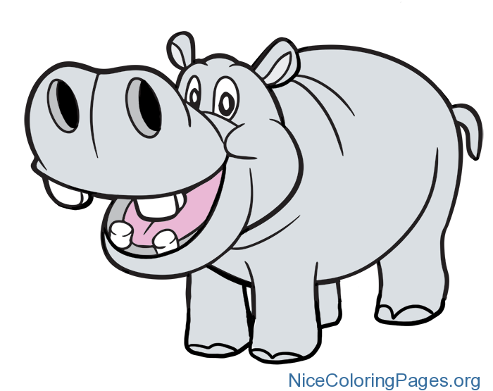Hippo clipart pink hippo. Png nice coloring pages