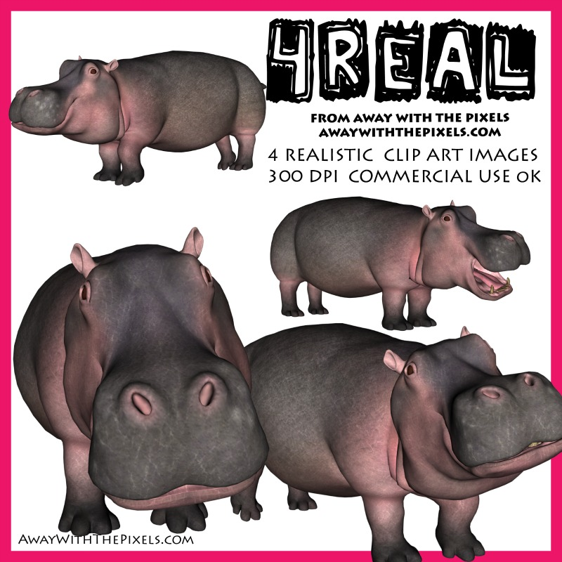 Hippo clipart real. Realistic animal for teachers