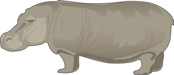 Free hippo. Hippopotamus clipart