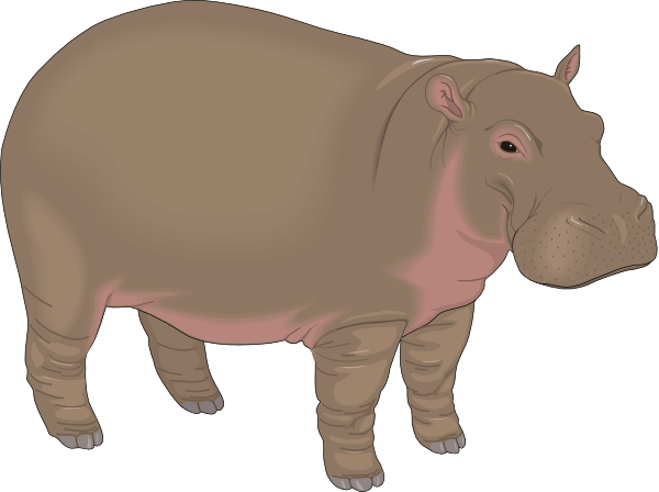 Clip art at clker. Hippopotamus clipart