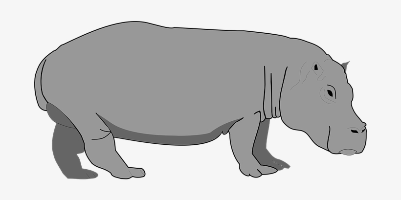 Hippopotamus clipart transparent background. Hippo