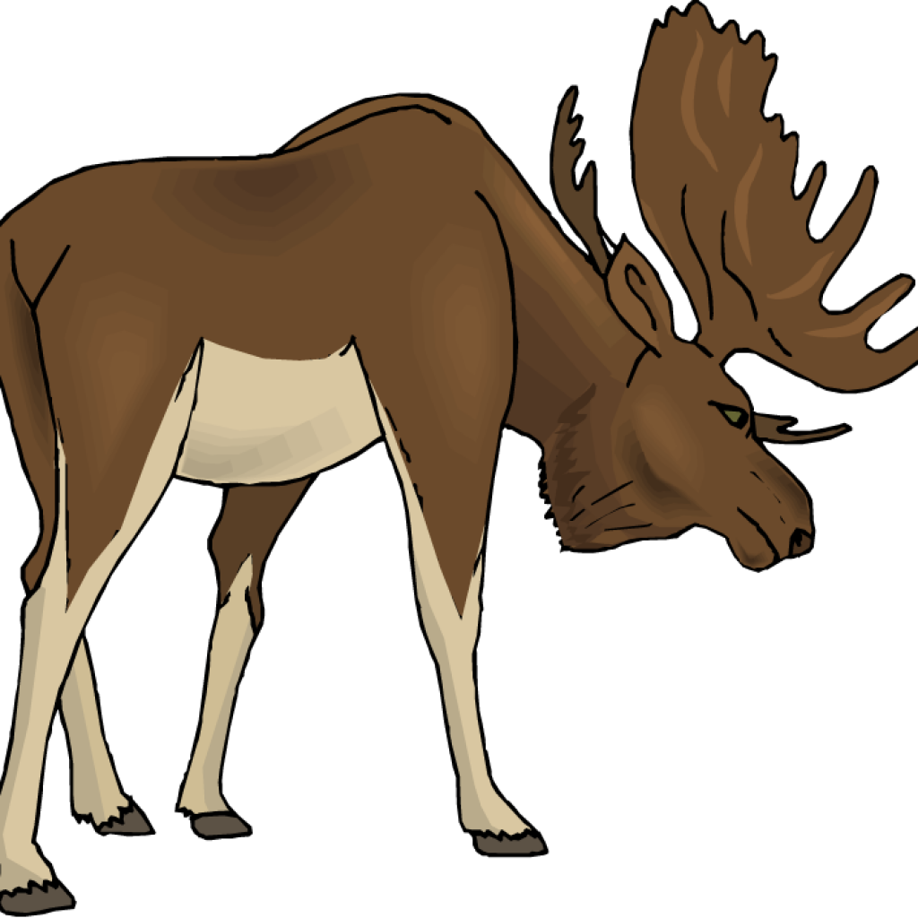 Free clip art real. Moose clipart valentine