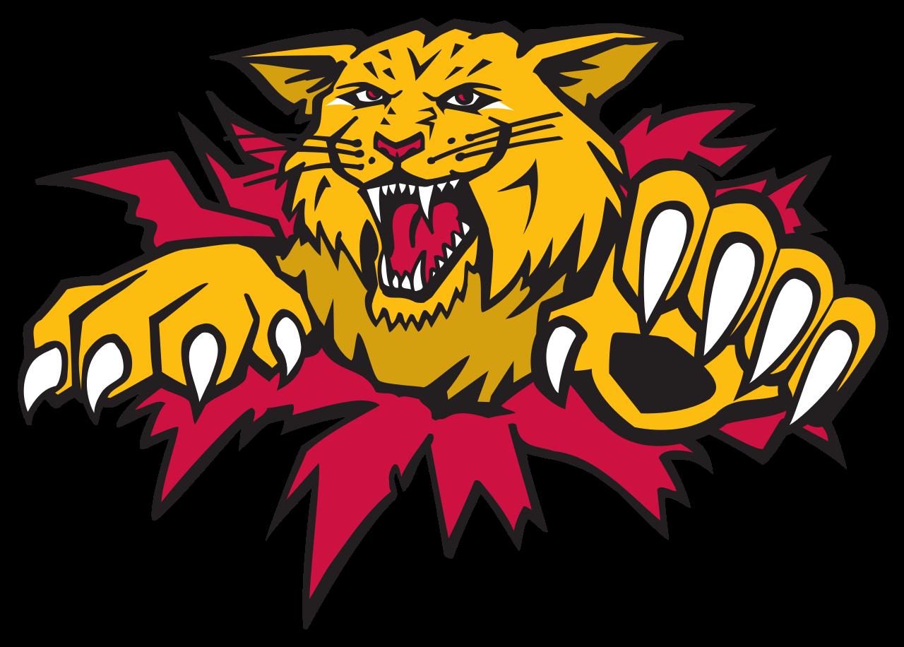 Wildcat clipart wildcat baseball.  cats cup road