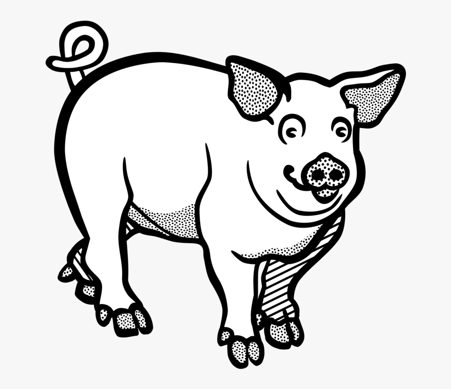 Wild boar line free. Hog clipart black and white