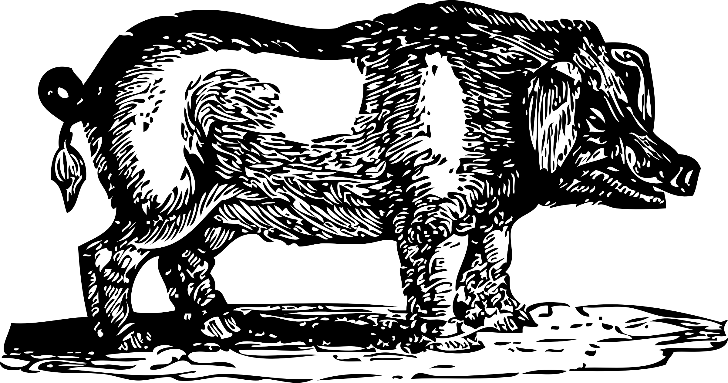 Hog clipart black and white. Big image png