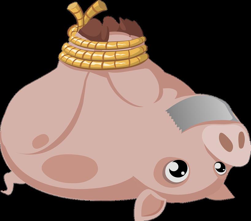 Walrus clipart brown. Wild boar hogtie clip