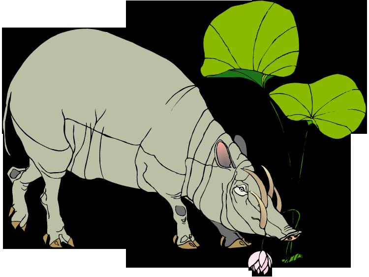 Free warthog. Yak clipart hairy animal