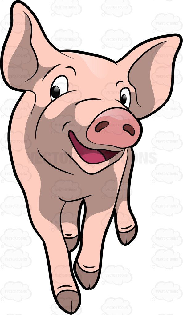 A piglet walks happily. Pig clipart hair