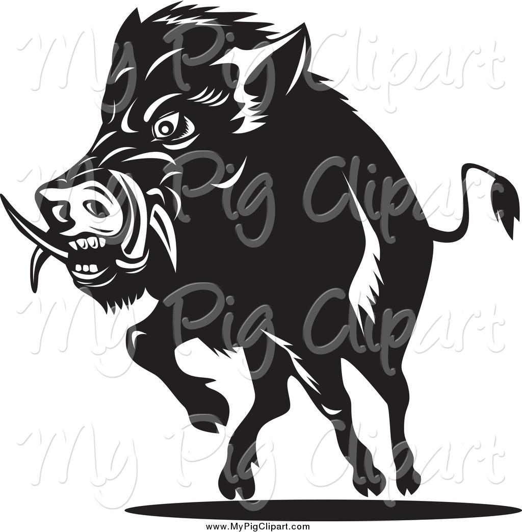 Swine of a black. Hog clipart pog