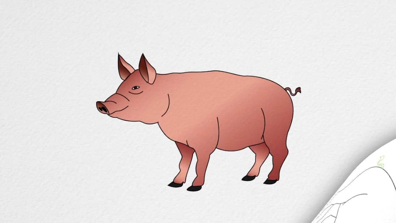 Hog Clipart Realistic Picture 2818572 Hog Clipart Realistic