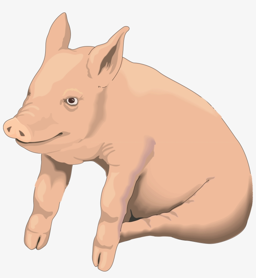 Hog clipart transparent background. Pigs