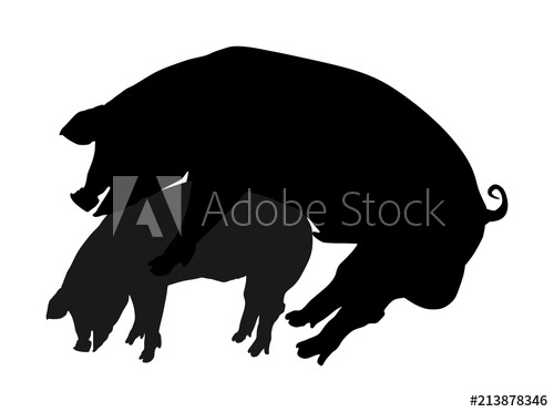 Sex vector silhouette illustration. Hog clipart two pig