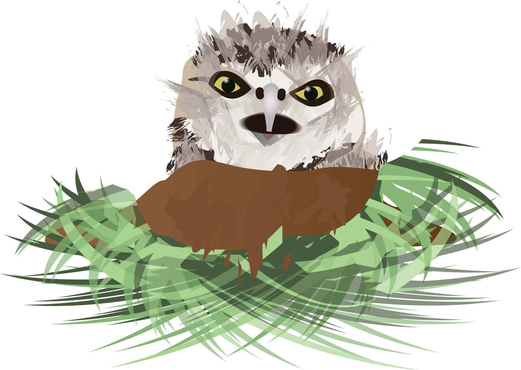 Burrowing owl big image. Nest clipart kid