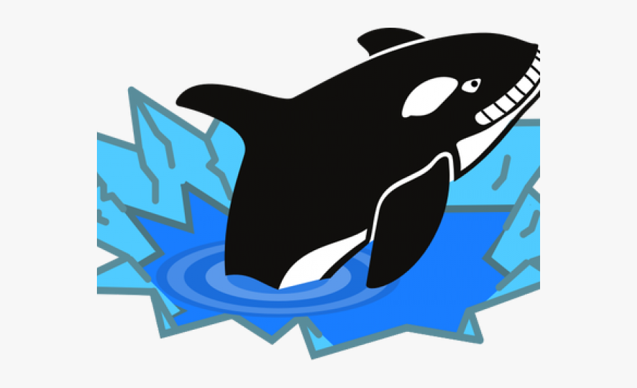 Orca clipart big whale. Ice fishing hole clip