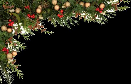 Stock photo christmas seasonal. Holly border png